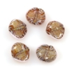 Lamp Bead Seashell 5Pc 22x18mm Sahara Summer